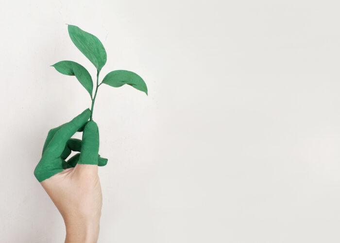 Hoe we met een duurzaam voedselaanbod honger de wereld uit helpen